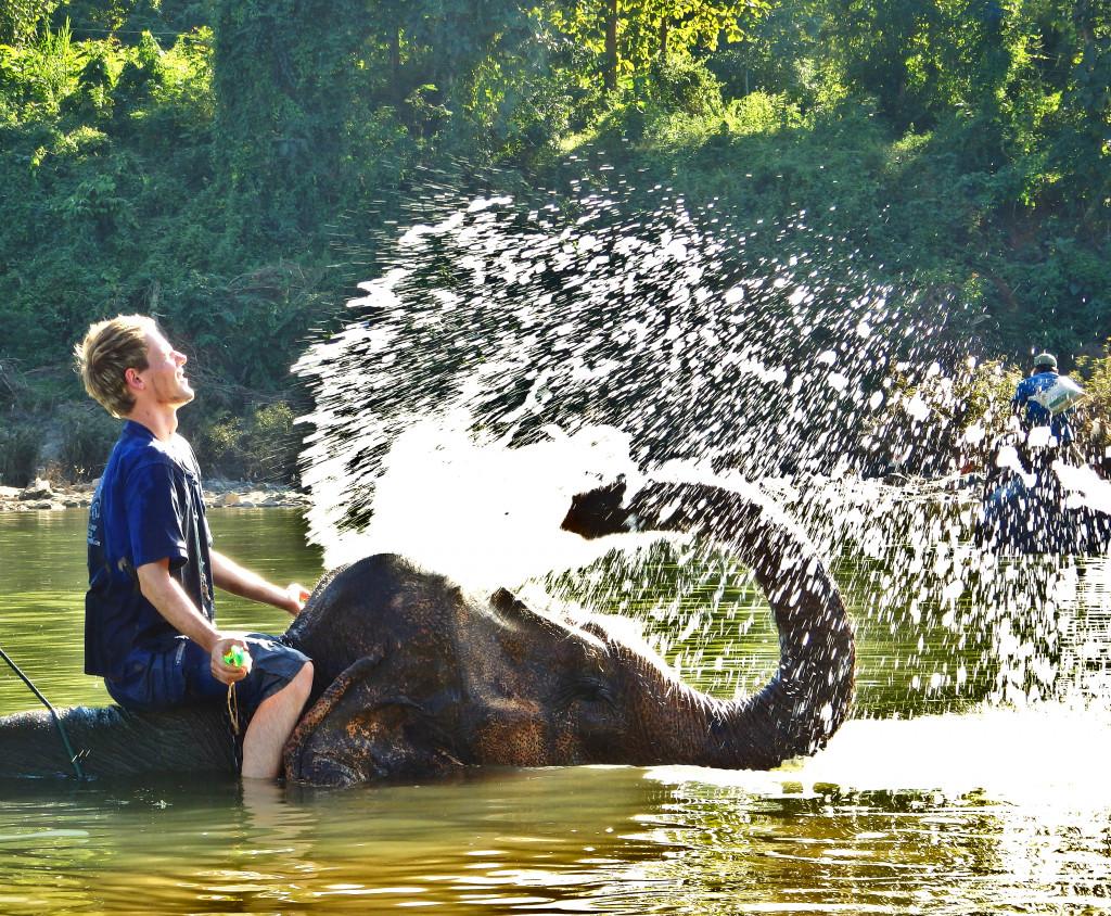 Baden mit Elefanten Luang Prabang