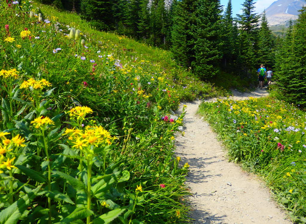 Blumen Helen Lake Trail