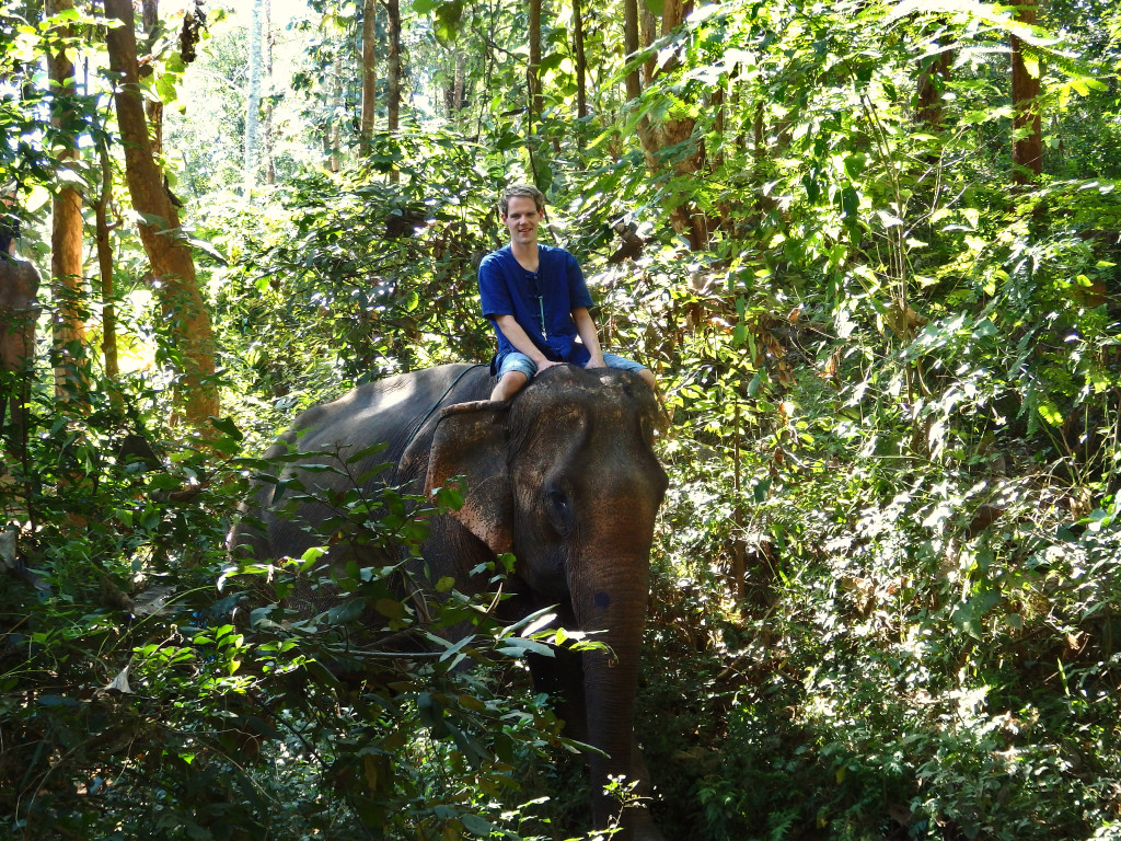 Reiten Elefanten Dschungel