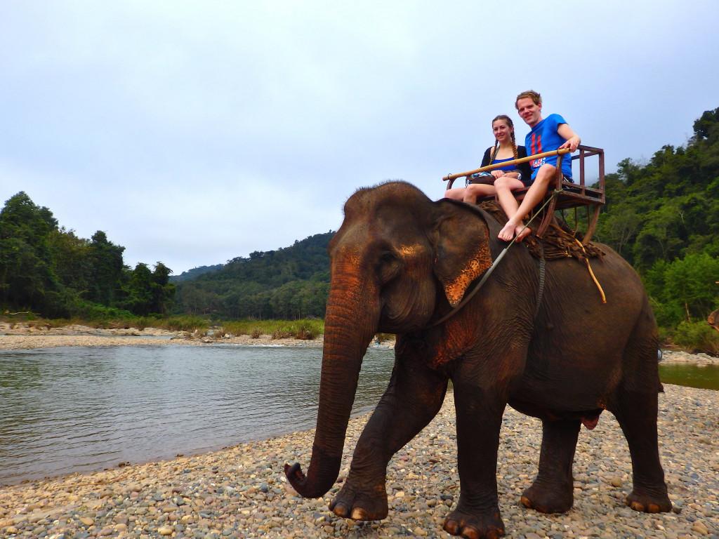 Elefanten Reiten Laos
