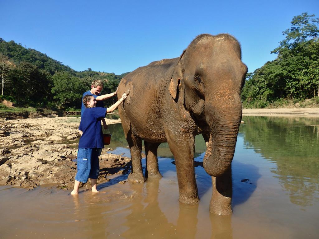 Elefanten waschen Laos