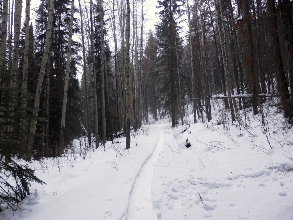 Schneeschuhwandern Kanada