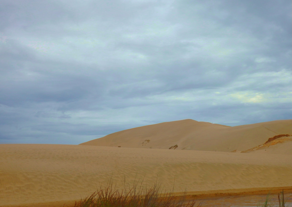 Te Paki Great Sand Dunes