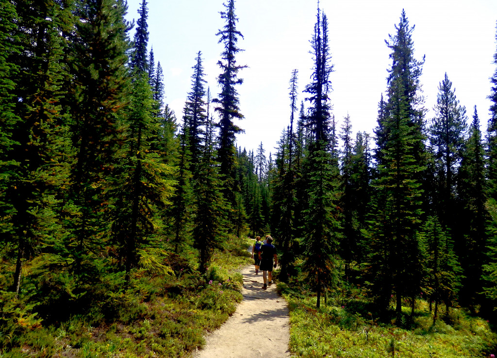 Wanderung Helen Lake Trail